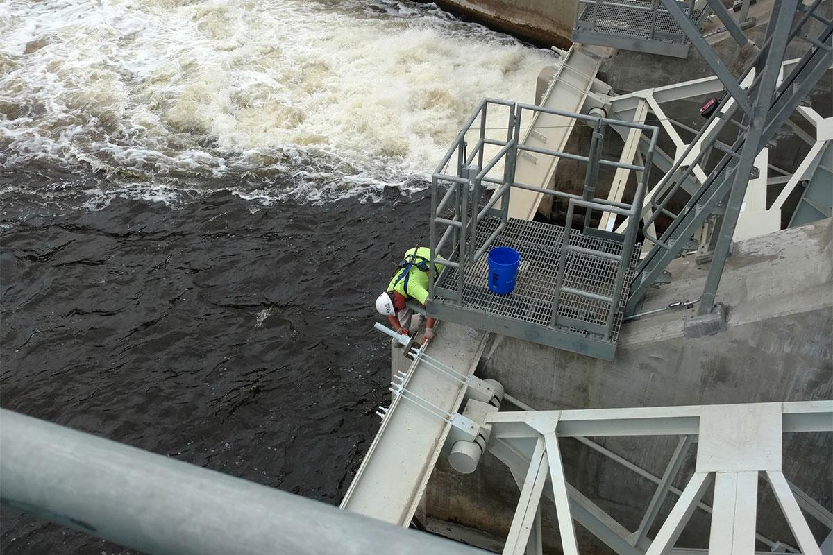 Moore's Park Dam